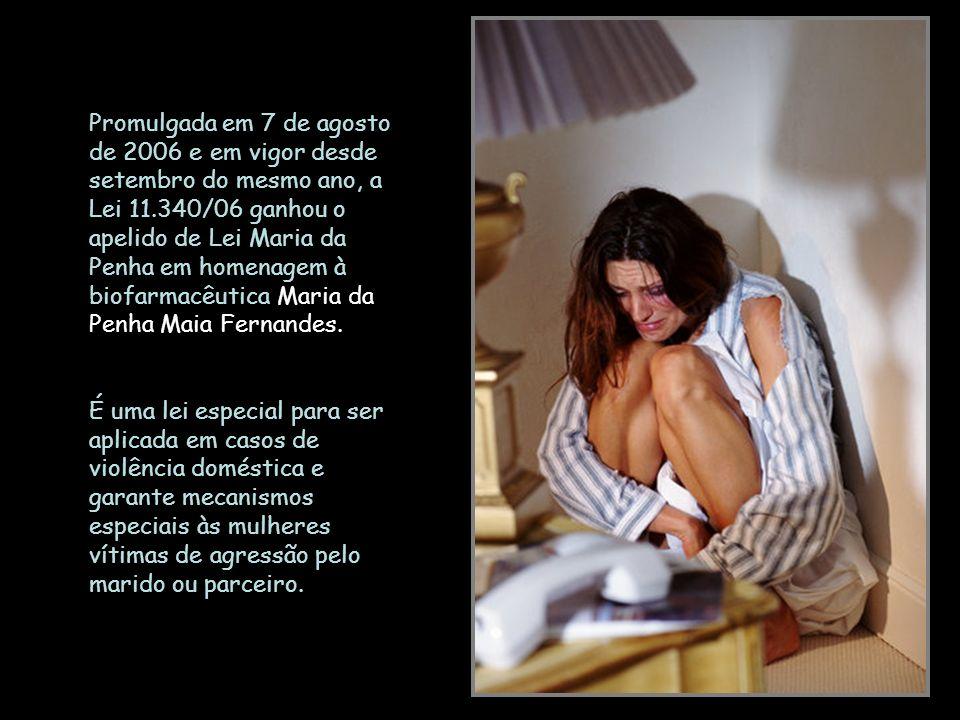 Promulgada em 7 de agosto de 2006 e em vigor desde setembro do mesmo ano, a Lei 11.340/06 ganhou o apelido de Lei Maria da Penha em homenagem à biofarmacêutica Maria da Penha Maia Fernandes.