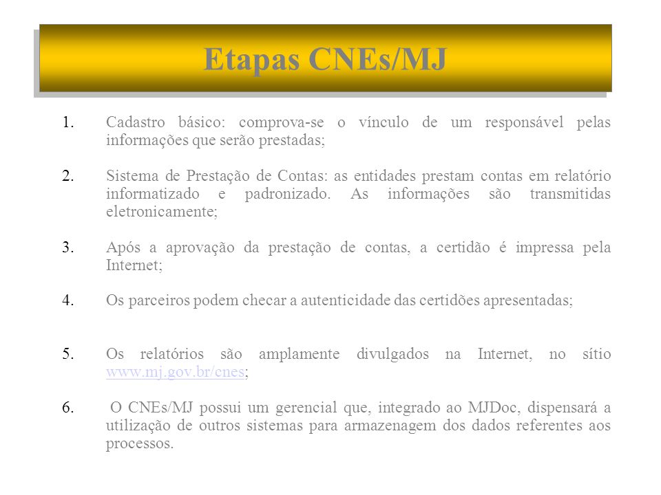Etapas CNEs/MJ Cadastro básico: comprova-se o vínculo de um responsável pelas informações que serão prestadas;