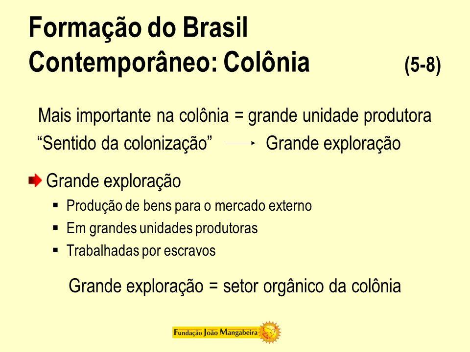 Formação do Brasil Contemporâneo: Colônia (5-8)
