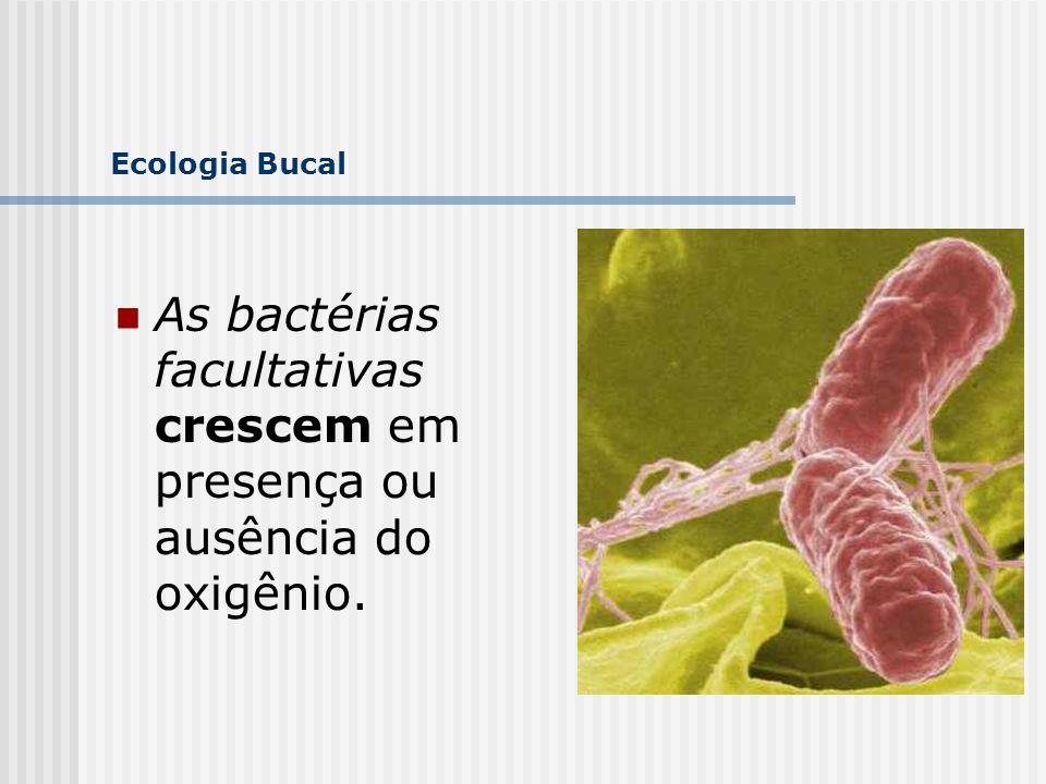 As bactérias facultativas crescem em presença ou ausência do oxigênio.