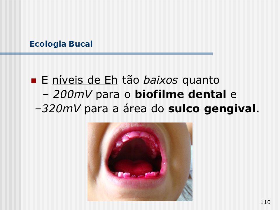E níveis de Eh tão baixos quanto – 200mV para o biofilme dental e