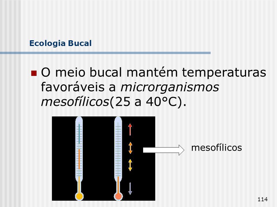 Ecologia Bucal O meio bucal mantém temperaturas favoráveis a microrganismos mesofílicos(25 a 40°C).