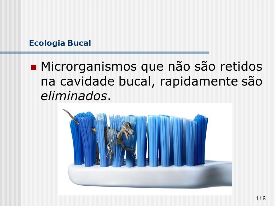 Ecologia Bucal Microrganismos que não são retidos na cavidade bucal, rapidamente são eliminados.
