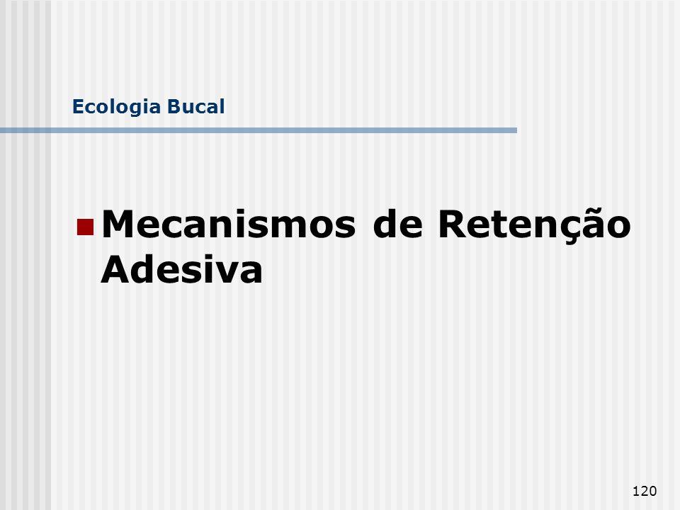 Mecanismos de Retenção Adesiva