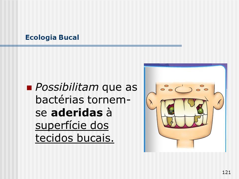 Ecologia Bucal Possibilitam que as bactérias tornem-se aderidas à superfície dos tecidos bucais.