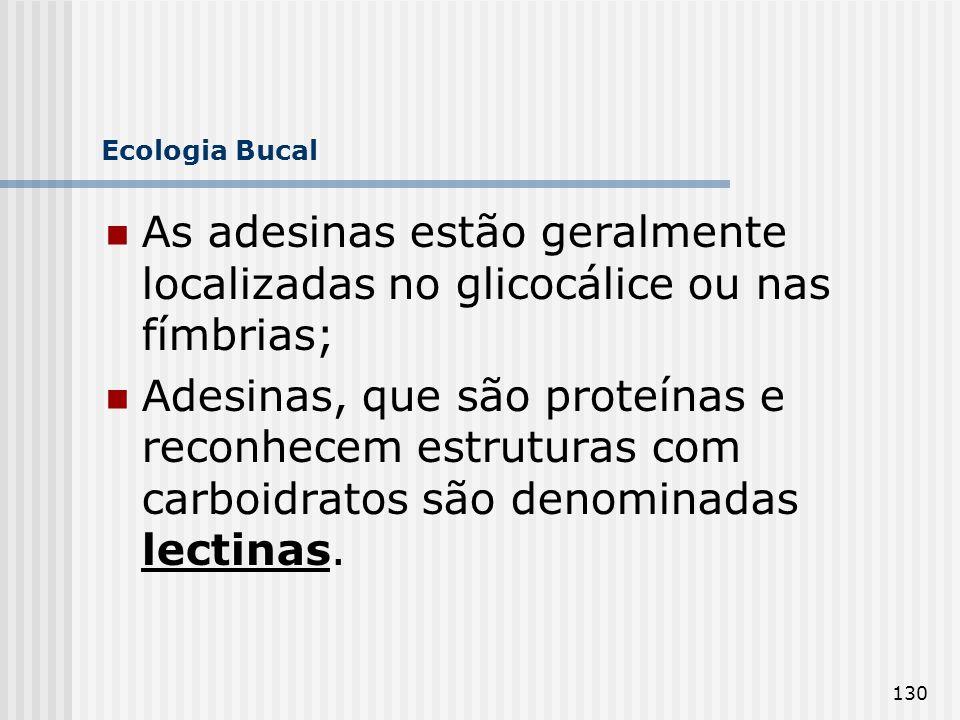 Ecologia Bucal As adesinas estão geralmente localizadas no glicocálice ou nas fímbrias;