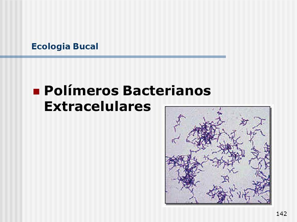 Polímeros Bacterianos Extracelulares