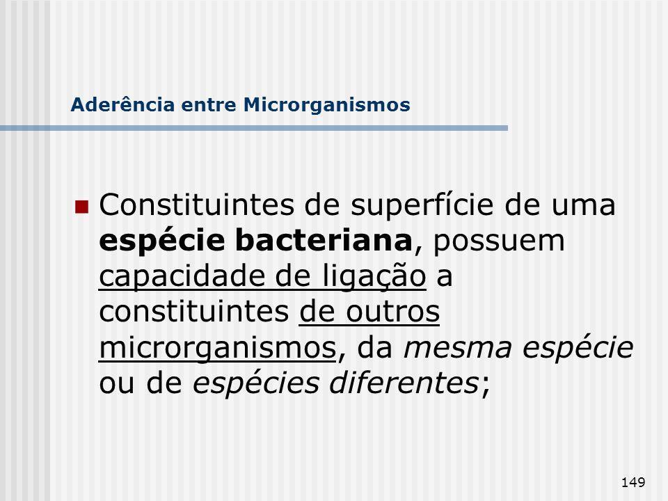 Aderência entre Microrganismos