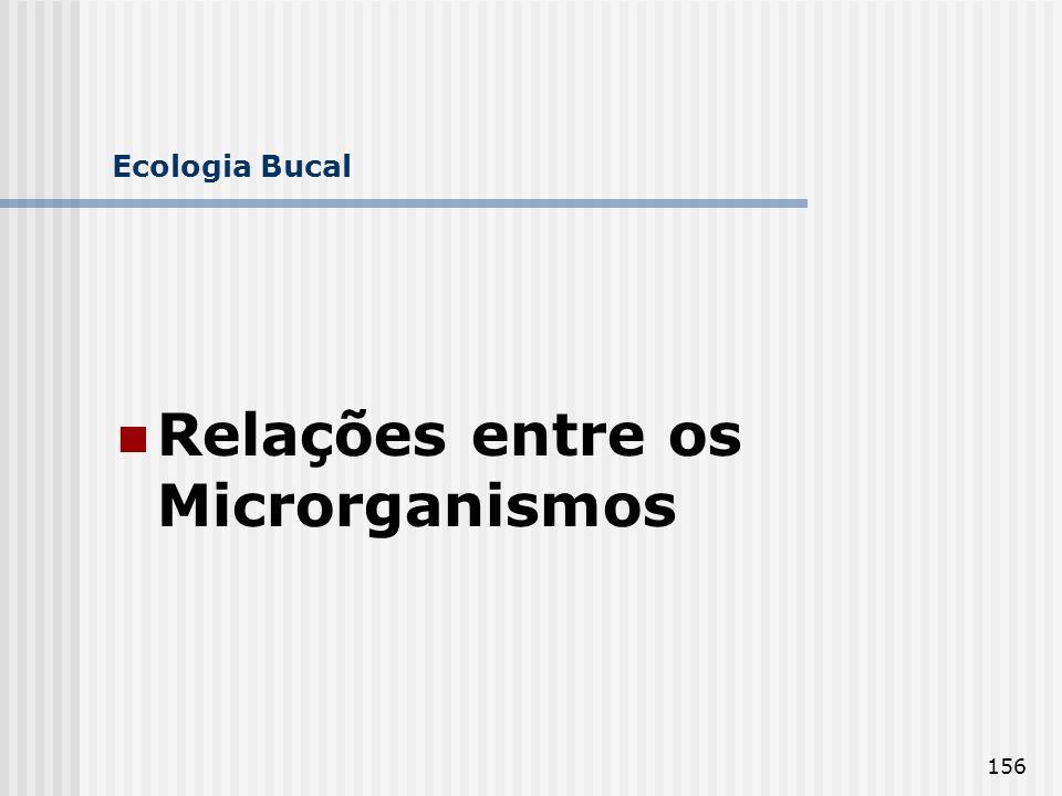 Relações entre os Microrganismos