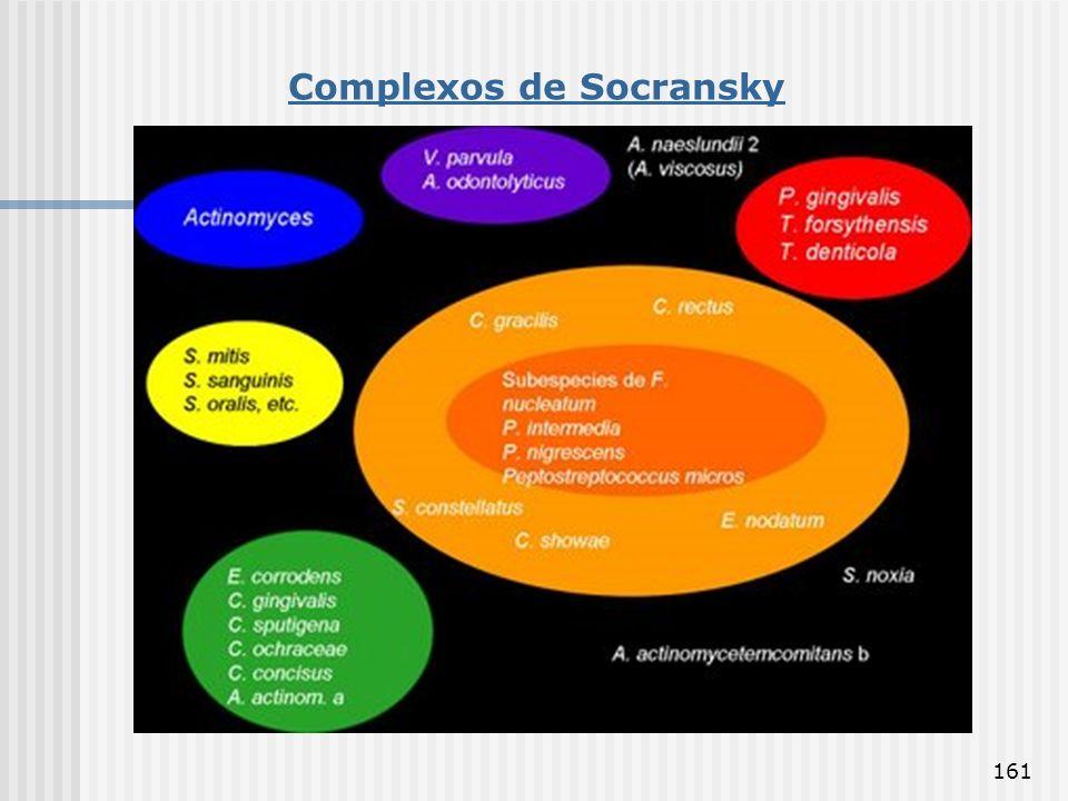 Complexos de Socransky