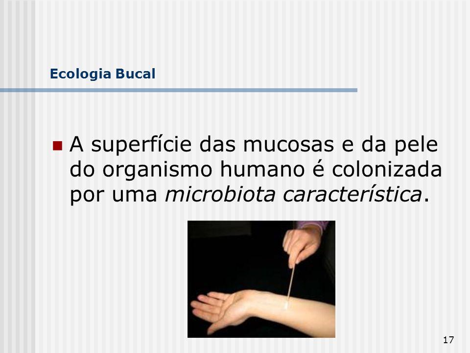 Ecologia Bucal A superfície das mucosas e da pele do organismo humano é colonizada por uma microbiota característica.