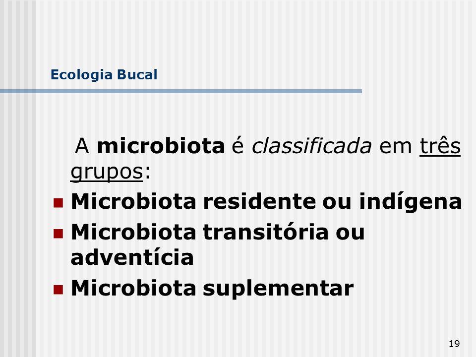 A microbiota é classificada em três grupos: