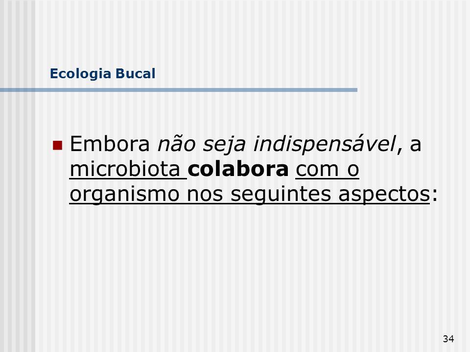 Ecologia Bucal Embora não seja indispensável, a microbiota colabora com o organismo nos seguintes aspectos: