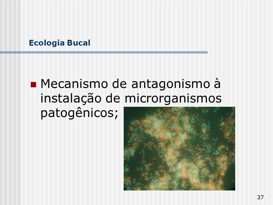 Mecanismo de antagonismo à instalação de microrganismos patogênicos;