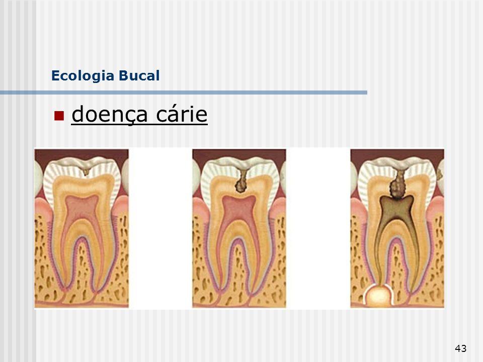 Ecologia Bucal doença cárie