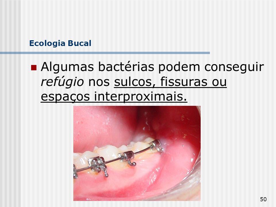 Ecologia Bucal Algumas bactérias podem conseguir refúgio nos sulcos, fissuras ou espaços interproximais.
