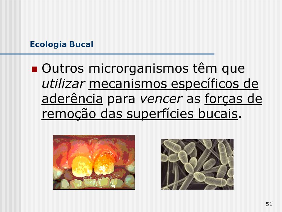 Ecologia Bucal Outros microrganismos têm que utilizar mecanismos específicos de aderência para vencer as forças de remoção das superfícies bucais.