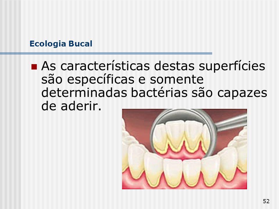 Ecologia Bucal As características destas superfícies são específicas e somente determinadas bactérias são capazes de aderir.