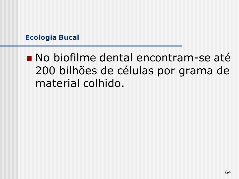 Ecologia Bucal No biofilme dental encontram-se até 200 bilhões de células por grama de material colhido.