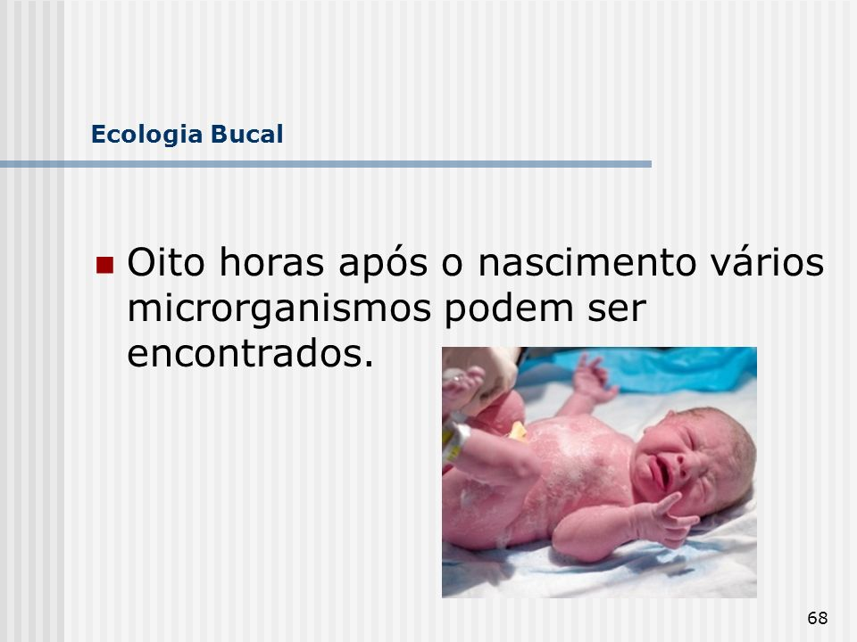 Ecologia Bucal Oito horas após o nascimento vários microrganismos podem ser encontrados.
