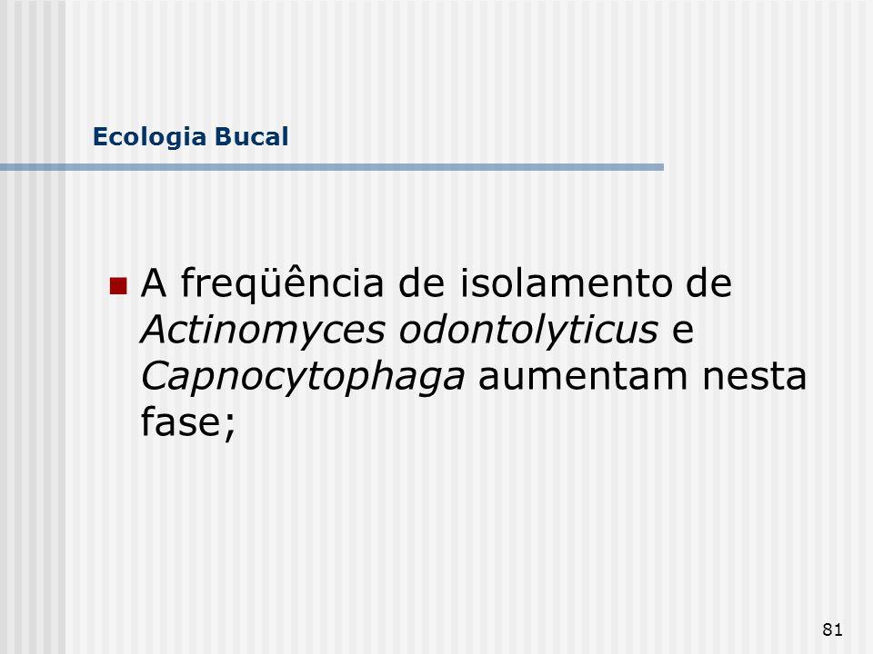 Ecologia Bucal A freqüência de isolamento de Actinomyces odontolyticus e Capnocytophaga aumentam nesta fase;