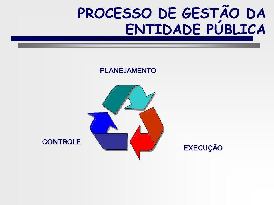 PROCESSO DE GESTÃO DA ENTIDADE PÚBLICA
