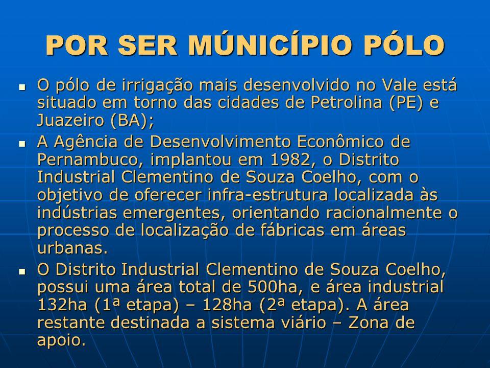 POR SER MÚNICÍPIO PÓLO O pólo de irrigação mais desenvolvido no Vale está situado em torno das cidades de Petrolina (PE) e Juazeiro (BA);
