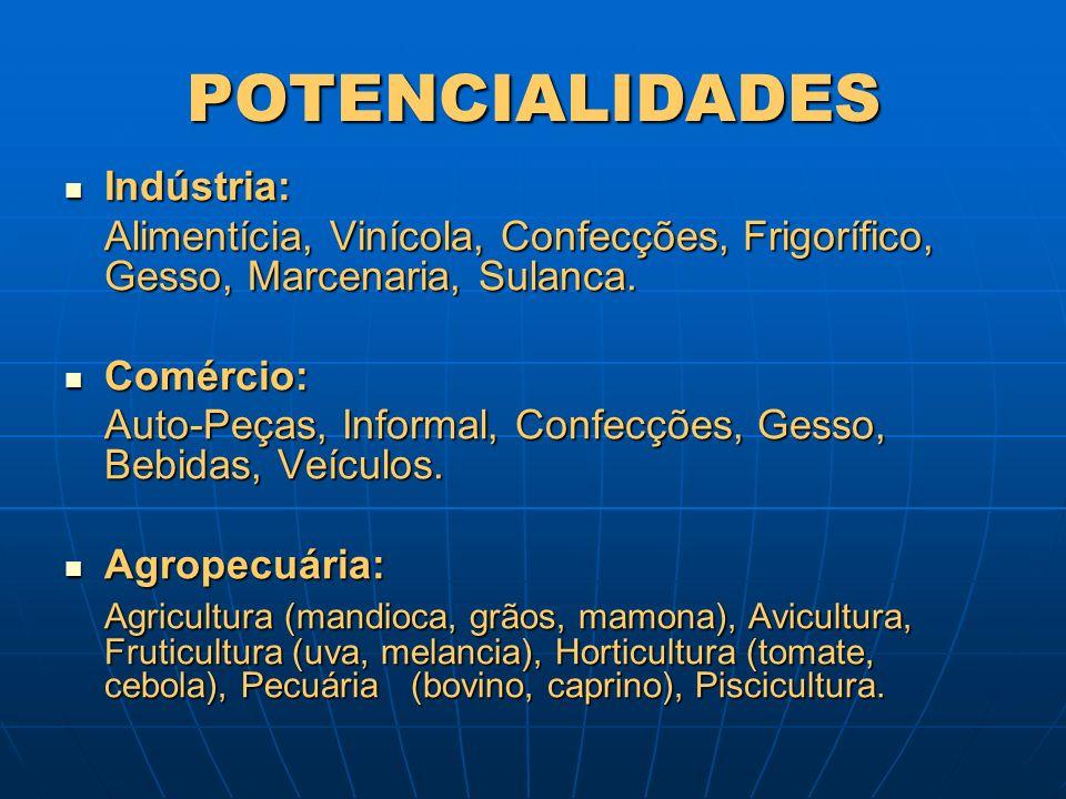 POTENCIALIDADES Indústria: