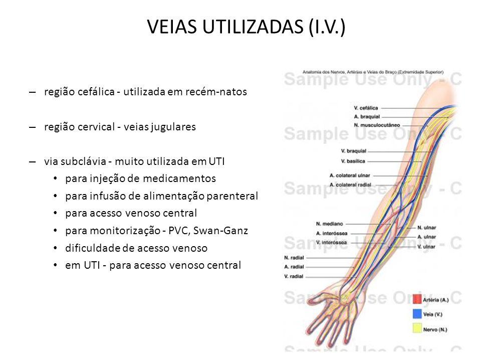 VEIAS UTILIZADAS (I.V.) região cefálica - utilizada em recém-natos