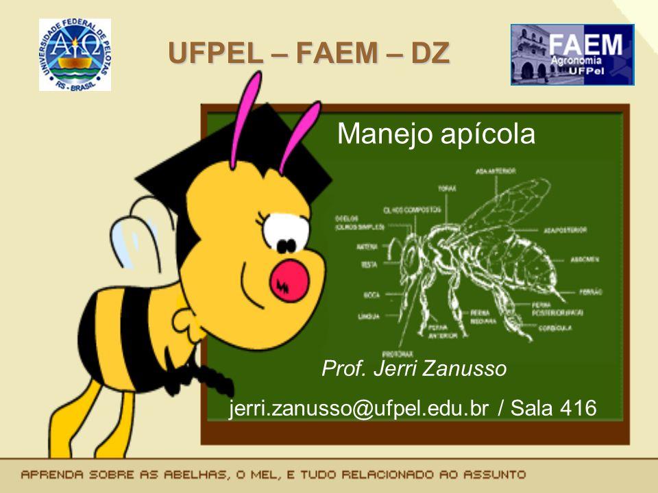 jerri.zanusso@ufpel.edu.br / Sala 416