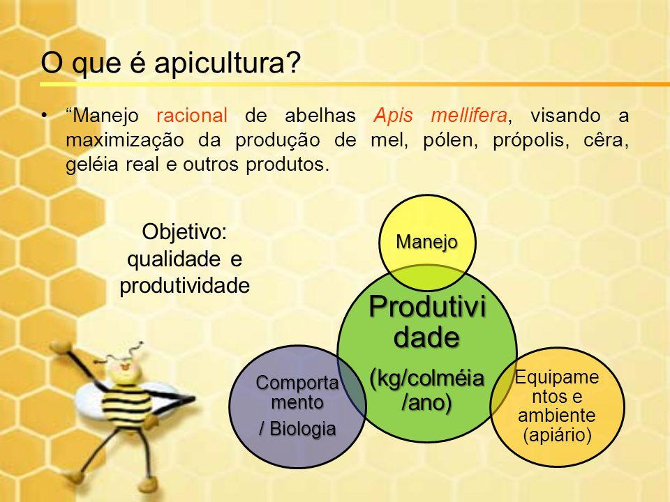O que é apicultura Produtividade (kg/colméia/ano)
