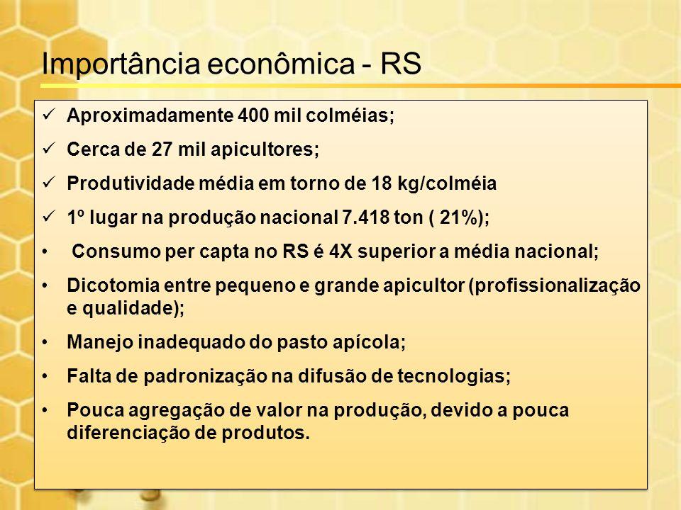 Importância econômica - RS