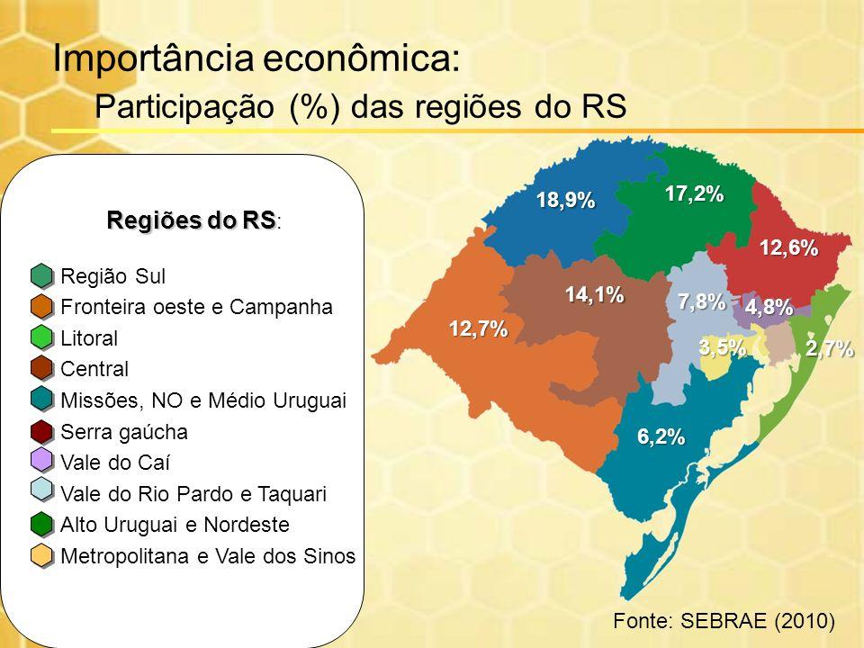 Importância econômica: Participação (%) das regiões do RS