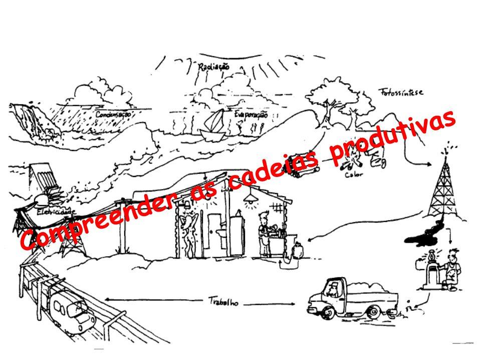 Compreender as cadeias produtivas