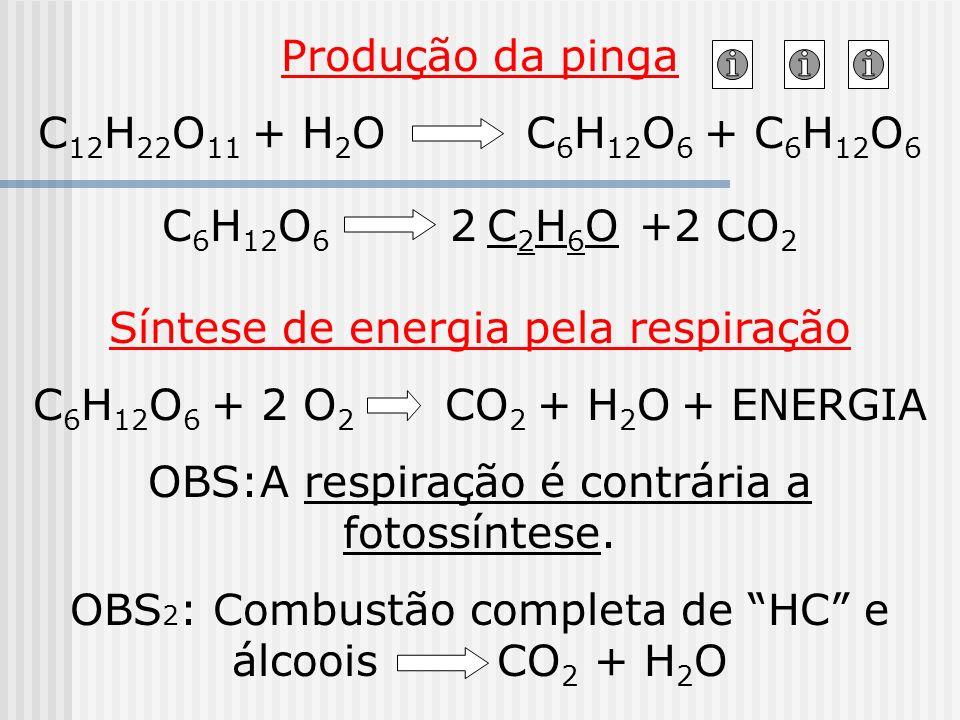 Síntese de energia pela respiração C6H12O6 + 2 O2 CO2 + H2O + ENERGIA