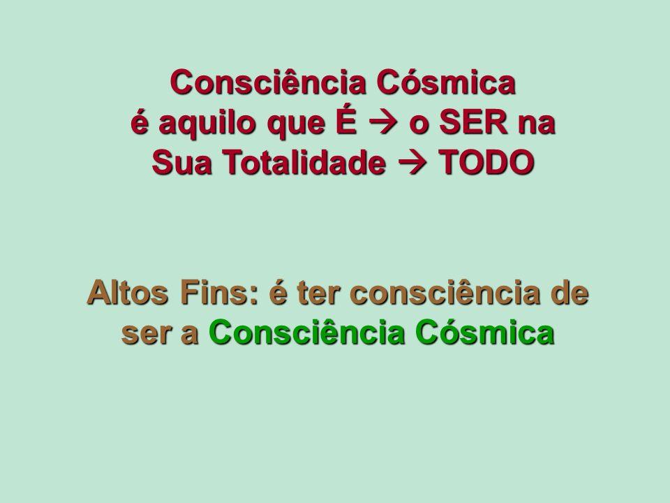 Consciência Cósmica é aquilo que É  o SER na Sua Totalidade  TODO
