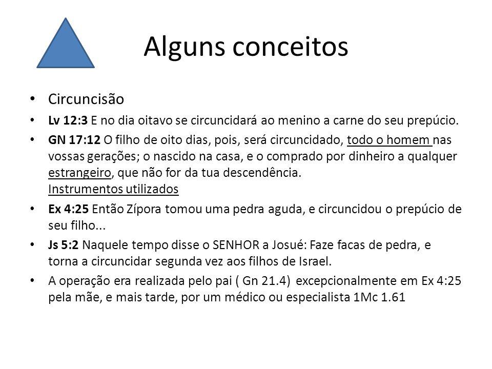 Alguns conceitos Circuncisão