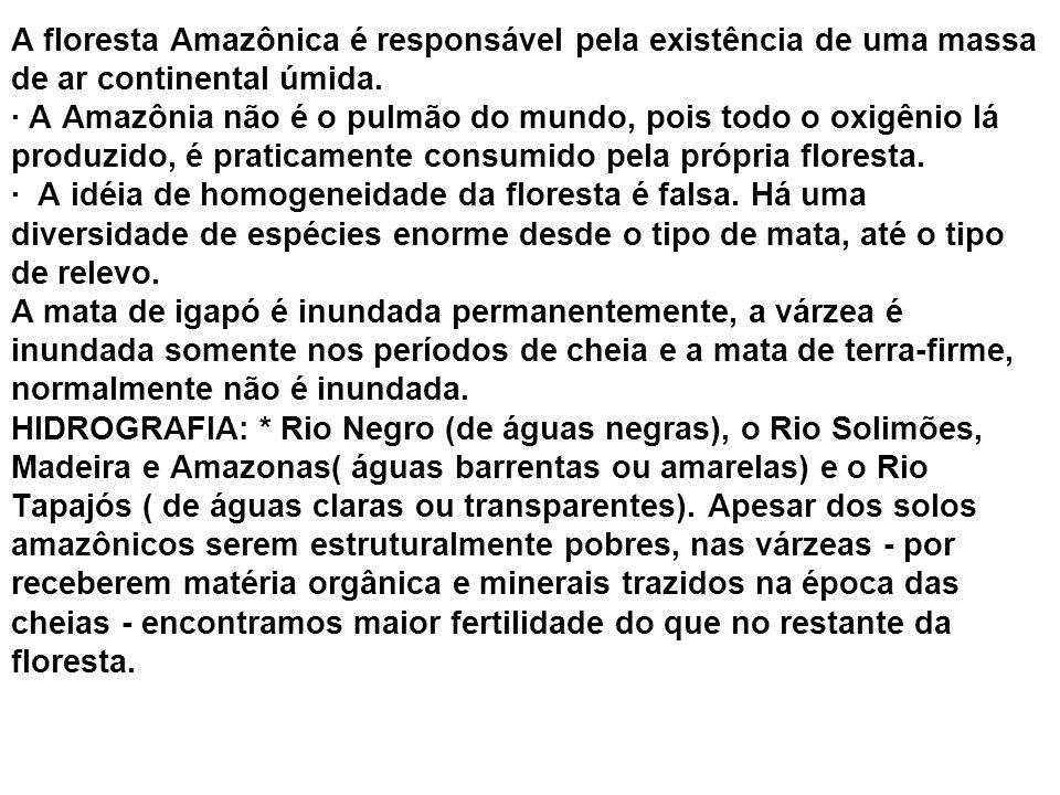 A floresta Amazônica é responsável pela existência de uma massa de ar continental úmida.
