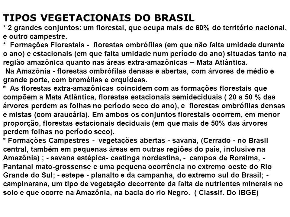 TIPOS VEGETACIONAIS DO BRASIL
