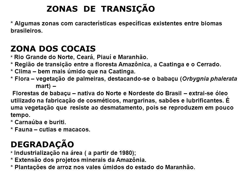 ZONAS DE TRANSIÇÃO * Algumas zonas com características específicas existentes entre biomas brasileiros.