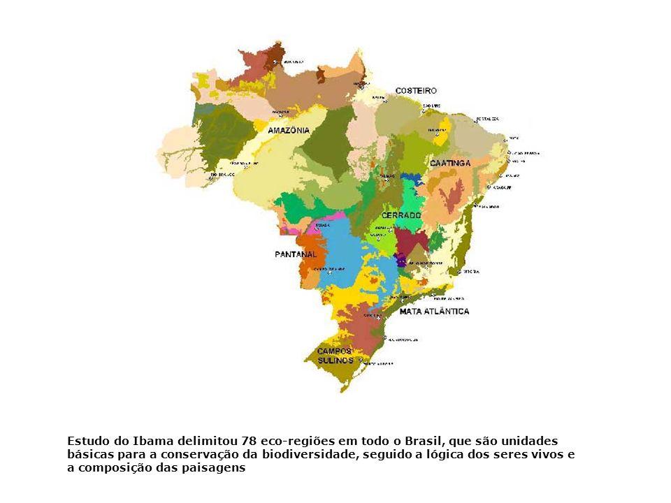 Estudo do Ibama delimitou 78 eco-regiões em todo o Brasil, que são unidades básicas para a conservação da biodiversidade, seguido a lógica dos seres vivos e