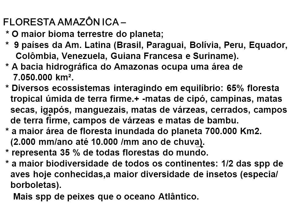 FLORESTA AMAZÔN ICA –. O maior bioma terrestre do planeta;