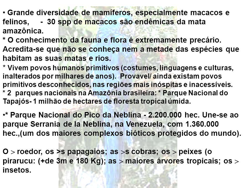 Grande diversidade de mamíferos, especialmente macacos e felinos, - 30 spp de macacos são endêmicas da mata amazônica. * O conhecimento da fauna e flora é extremamente precário. Acredita-se que não se conheça nem a metade das espécies que habitam as suas matas e rios. * Vivem povos humanos primitivos (costumes, linguagens e culturas, inalterados por milhares de anos). Provavel/ ainda existam povos primitivos desconhecidos, nas regiões mais inóspitas e inacessíveis. * 2 parques nacionais na Amazônia brasileira: * Parque Nacional do Tapajós- 1 milhão de hectares de floresta tropical úmida.