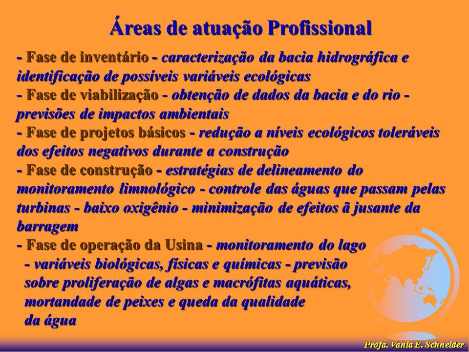 Áreas de atuação Profissional