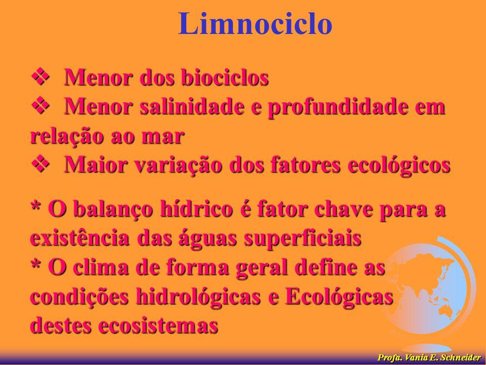 Limnociclo  Menor dos biociclos