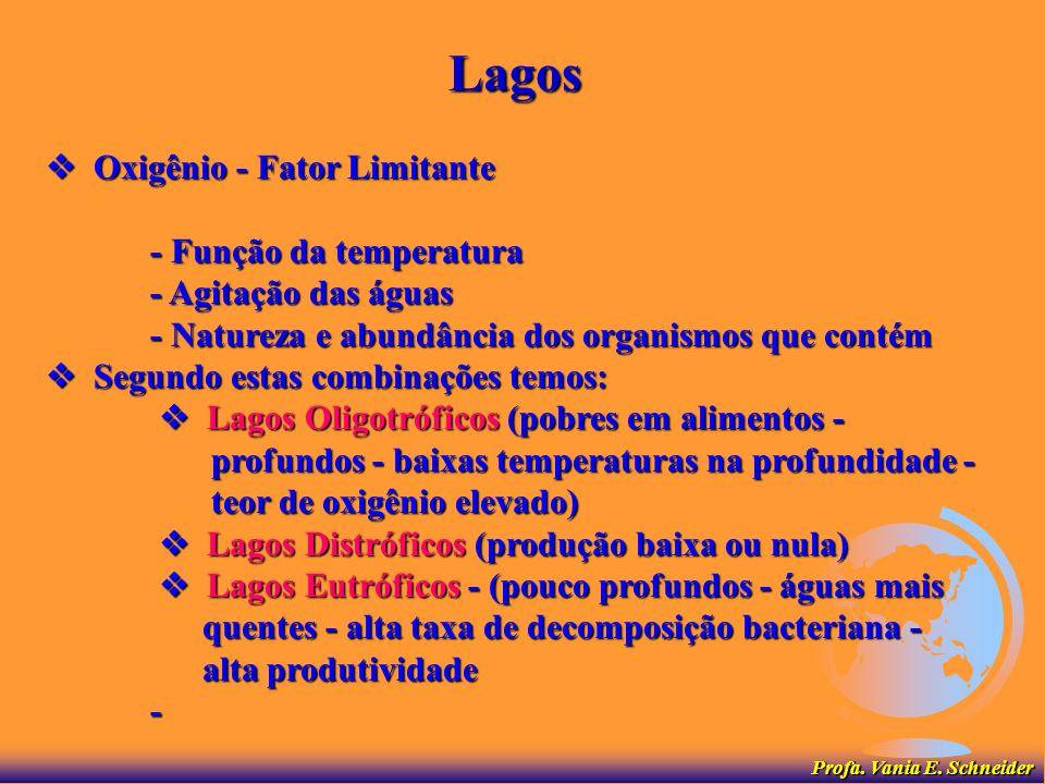 Lagos  Oxigênio - Fator Limitante - Função da temperatura