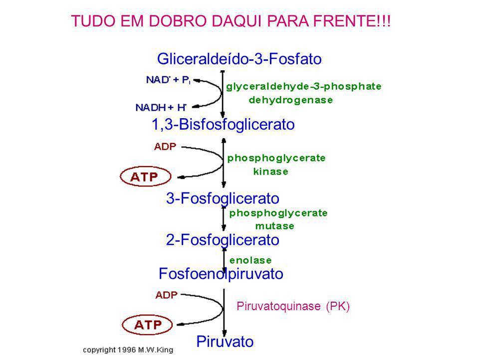 TUDO EM DOBRO DAQUI PARA FRENTE!!!