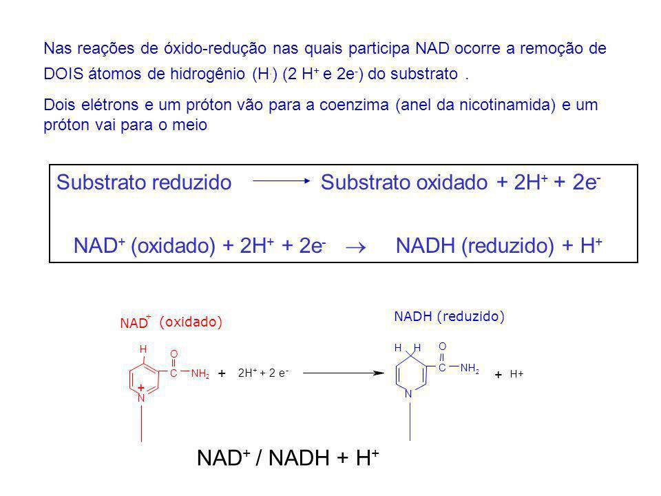 NAD+ / NADH + H+ Substrato reduzido Substrato oxidado + 2H+ + 2e-