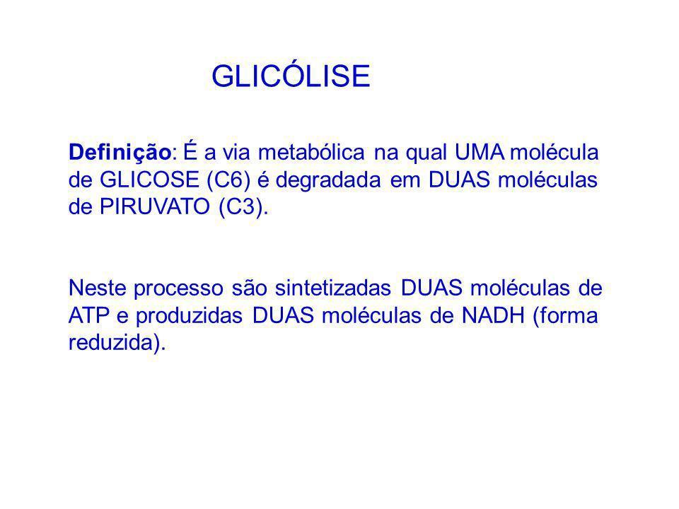 GLICÓLISE Definição: É a via metabólica na qual UMA molécula de GLICOSE (C6) é degradada em DUAS moléculas de PIRUVATO (C3).