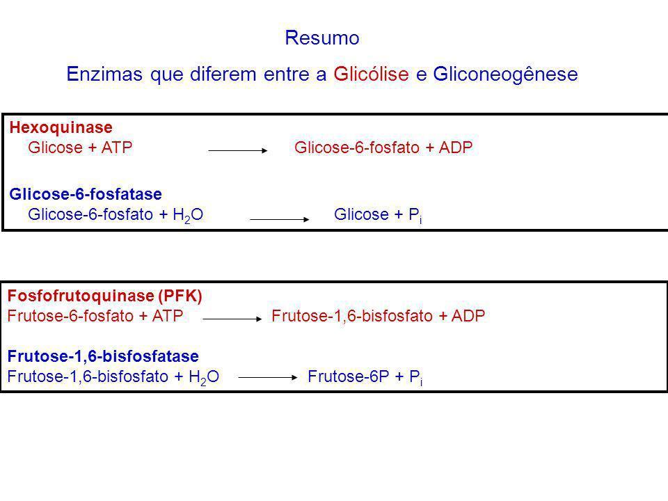 Enzimas que diferem entre a Glicólise e Gliconeogênese